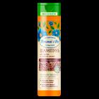 Шампунь «Увлажняющий» для сухих и ломких волос (250 мл)